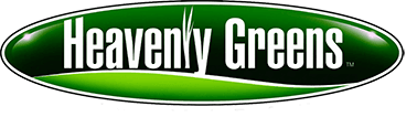 denver artificial grass pros